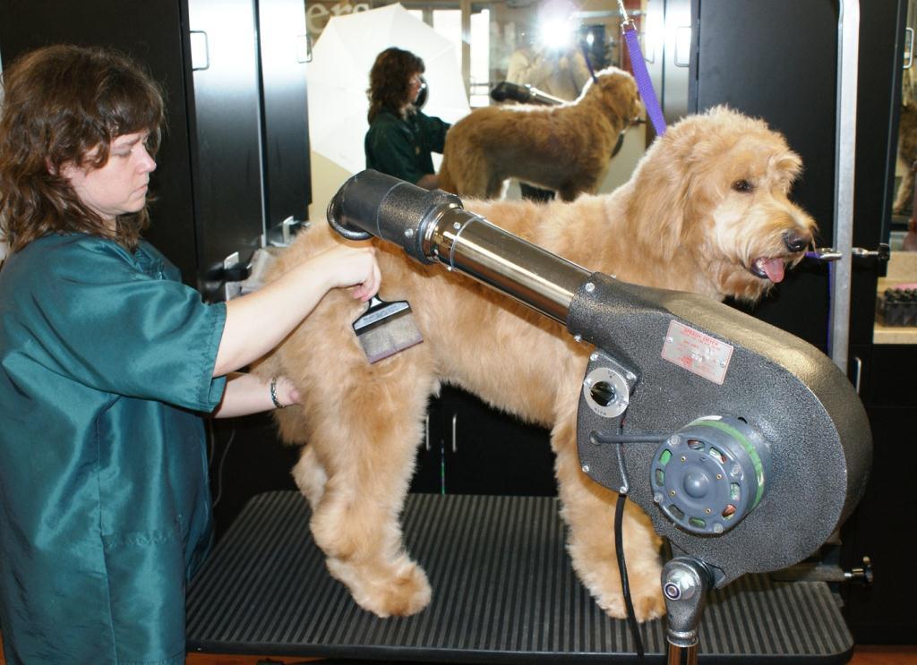 Hand Held Dog Grooming Hair Dryers