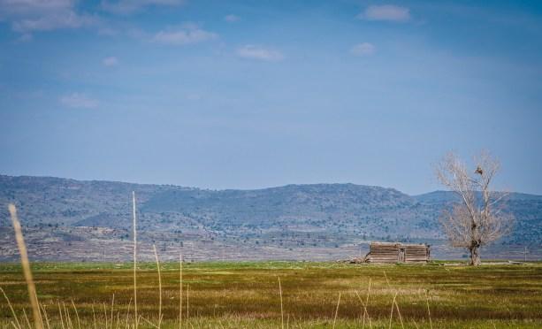 Old homestead - California