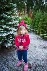 Macks Christmas Tree Hunt-9