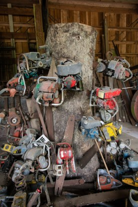 The chainsaw Tree - Camp 18