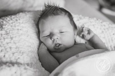 Violet Pearl's Newborn Photos-7