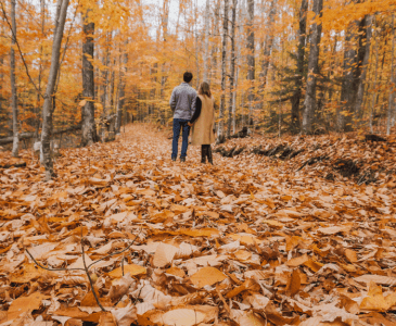 Looking for a New England destination with all the fall feels? Fall in the White Mountains, New Hampshire is truly magical, keep reading to find out why!