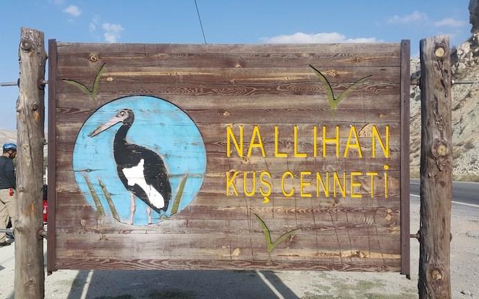Nallıhan Kuş Cenneti   Nallıhan, Ankara