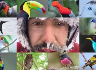 Gezgin Röportajları | Emin Yoğurtcuoğlu @birddetective