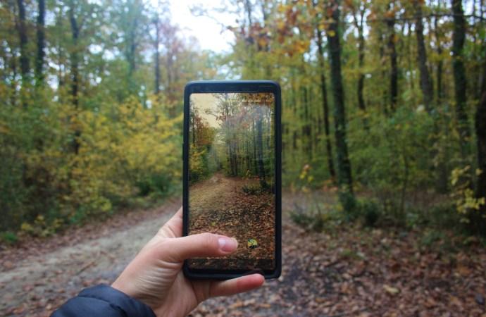 İğneada Longoz Ormanları Gezi Rehberi | İğneada Kamp Alanları