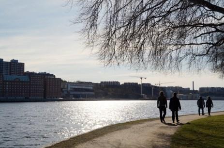 Djurgården, Promenad på Djurgården