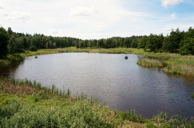 Lidingö, Västra Långängskärret, Linnmans fågelsjö, vy från fågeltornets andra våning