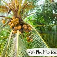 THAILANDE // KOH PHI PHI DON ( partie 2 )