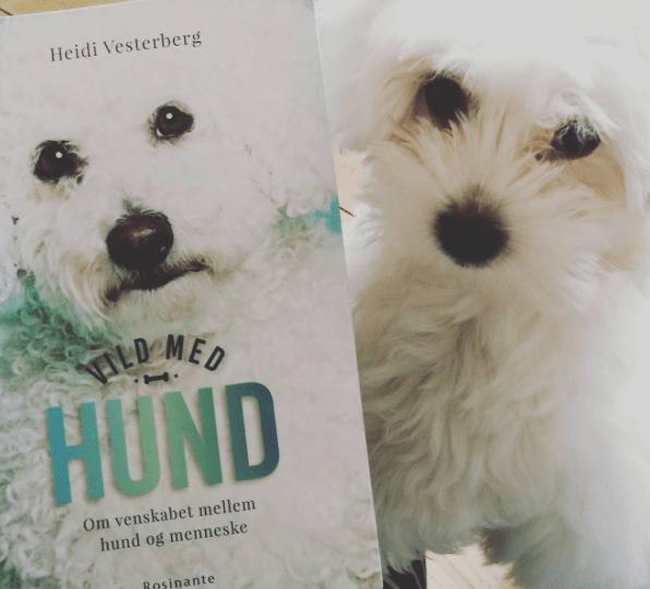 Anmeldelse af Vild med hund