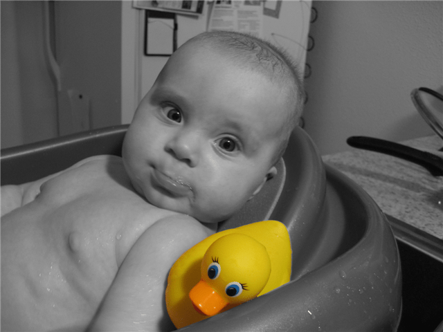 ducky-small