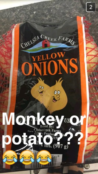 Monkey or Onion ... Potato