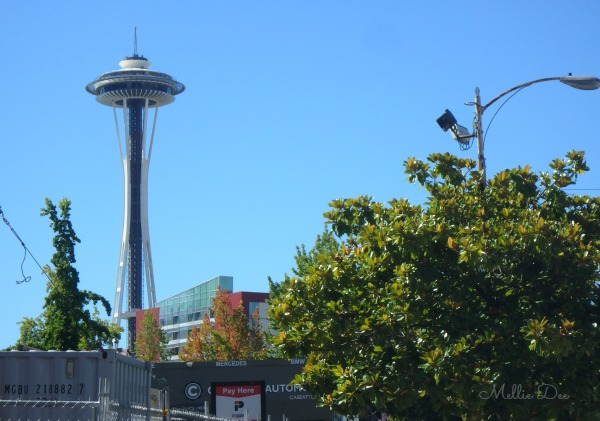 Space Needle | Seattle, Washington | At a Distance