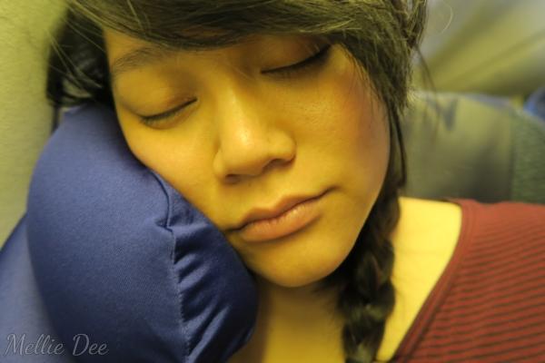 ANA Aircraft | Mellie Dee Sleep