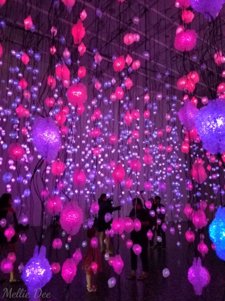 Houston Art Museum | Houston, Texas | Pipilotti Rist: Pixel Forest and Worry Will Vanish Exhibit