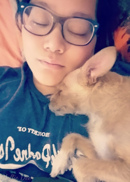 Mellie Dee & Rizzo Sleeping
