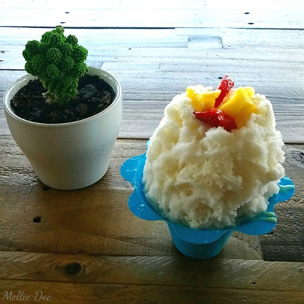 Moody Ice | Houston, Texas | Coconut Hawaiian Shaved Ice