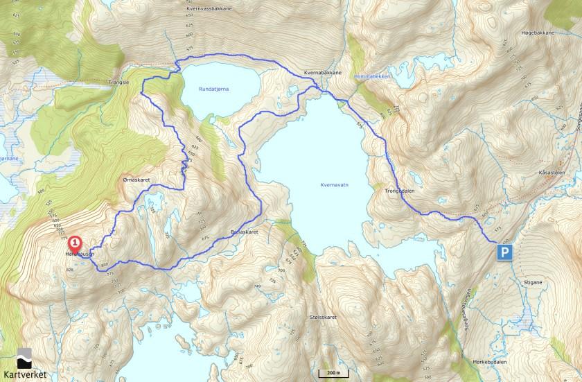 kart1