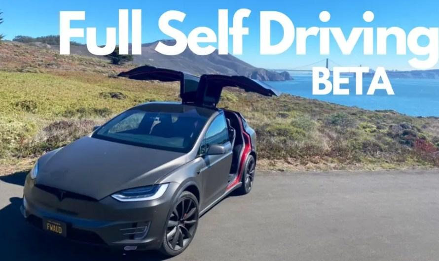 Tesla Full Self Driving reactions by Tesla raj