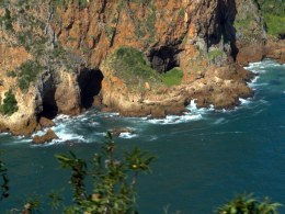 Featherbed Reserve, Knysna