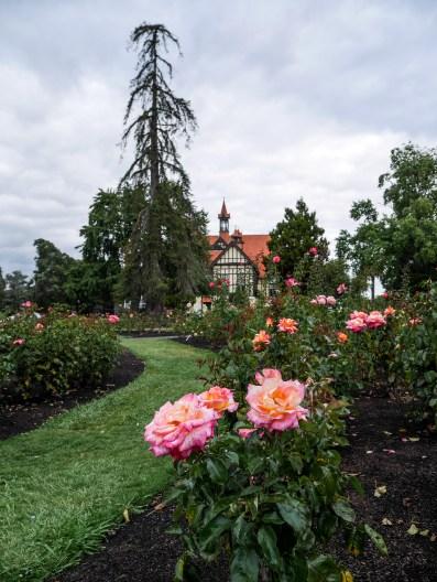 Rotorua, Government's Garden.