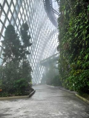 Marina Bay Sands : Cloudforest