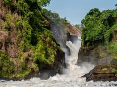 Murchinson Falls National Park-203