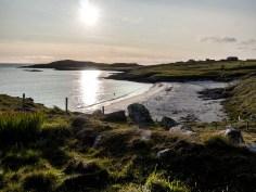 Shetland-35