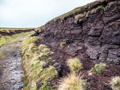 Culswick Broch Shetland-4