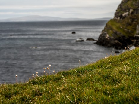 Melby Beach Shetland-22