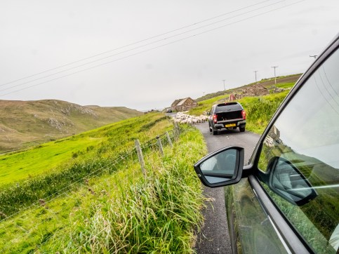West Mainland Shetland-1-4