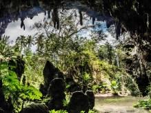 Rurutu, îles Australes : Grotte Ana A'eo, dite Grotte Mitterrand.