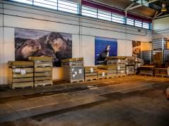 ïles Shetland, Unst : Reel Shetland, distillerie
