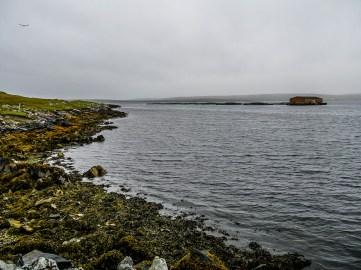 Yell-Shetland-3
