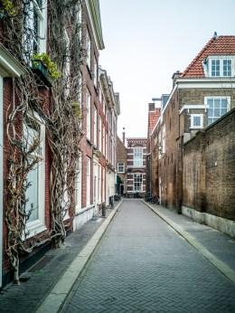 La Haye-11