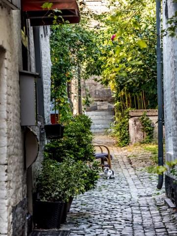 Liège-87