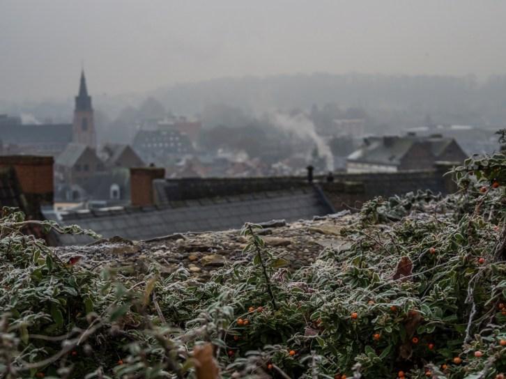 Vue de Mons depuis le parc du château