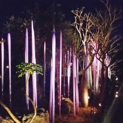 Neodymium Reeds, 2014