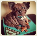French bulldog puppy cake