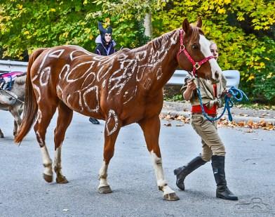 southport-parade-halloween-2014-138