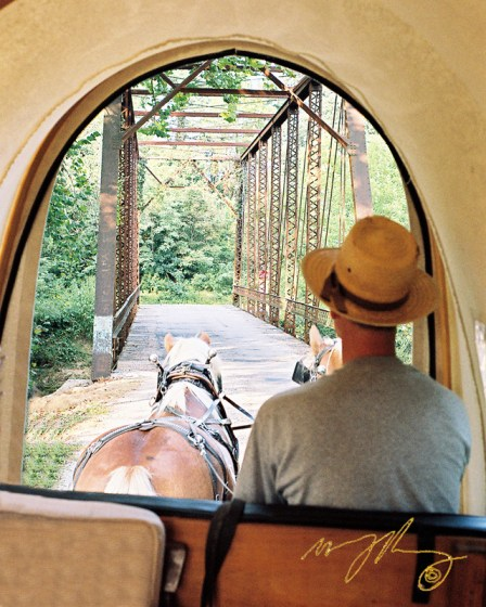 blazing-saddle-wagon-patrol
