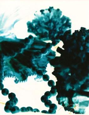 Black and White negative in color darkroom