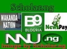Nigeria News Income Program Website