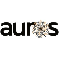 Auros Knowledge Systems