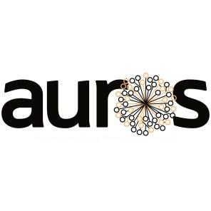 Auros Knowledge Systems