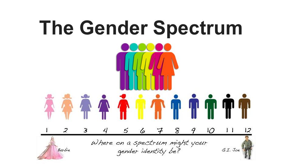 The Gender Spectrum Emily
