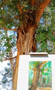 Melody Owens painting Pastel on Easel in Lake Forest