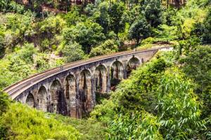 a railway bridge supported by brick arches surrounded by lush green jungle