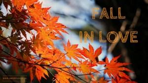 HERFST ☘️ FALL IN LOVE ? Kom in dat warme gezellige herfstgevoel. Klik verder voor 10x creëer een herfstgevoel met herfstkleuren en kaarsen en wollen dekens Prachtige herfstsfeer plaatjes en natuurlijk de herfst feestjes zoals Halloween en Sinterklaas en vakantie. Plus lekkere herfst drankjes & hapjes. Mels Feestje & 10x Herfst Sfeer Creëren