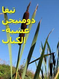 تيفا دومنيجن -عشية الكباب and
