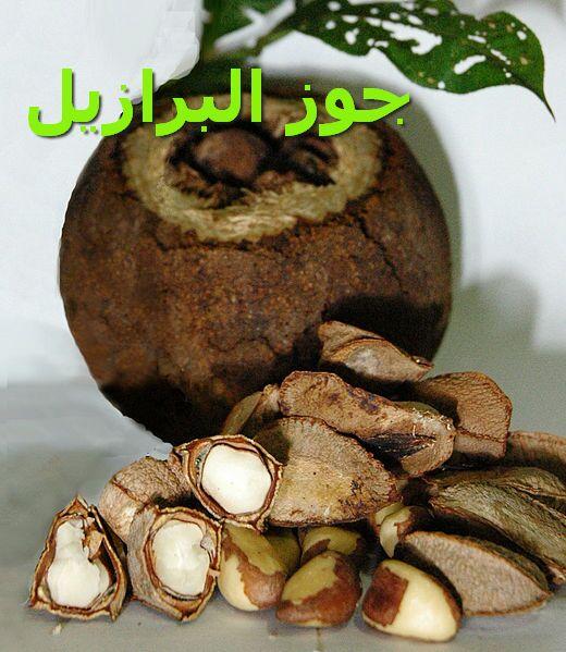 جوز البرازيل_seeds